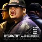 Скачать новый альбом Fat Joe — J.O.S.E. 2 (2009)